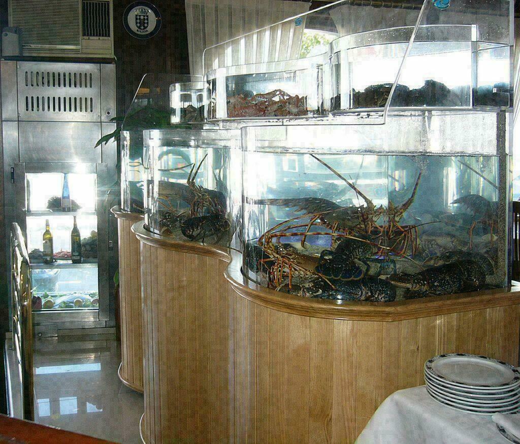 Aquariums 2