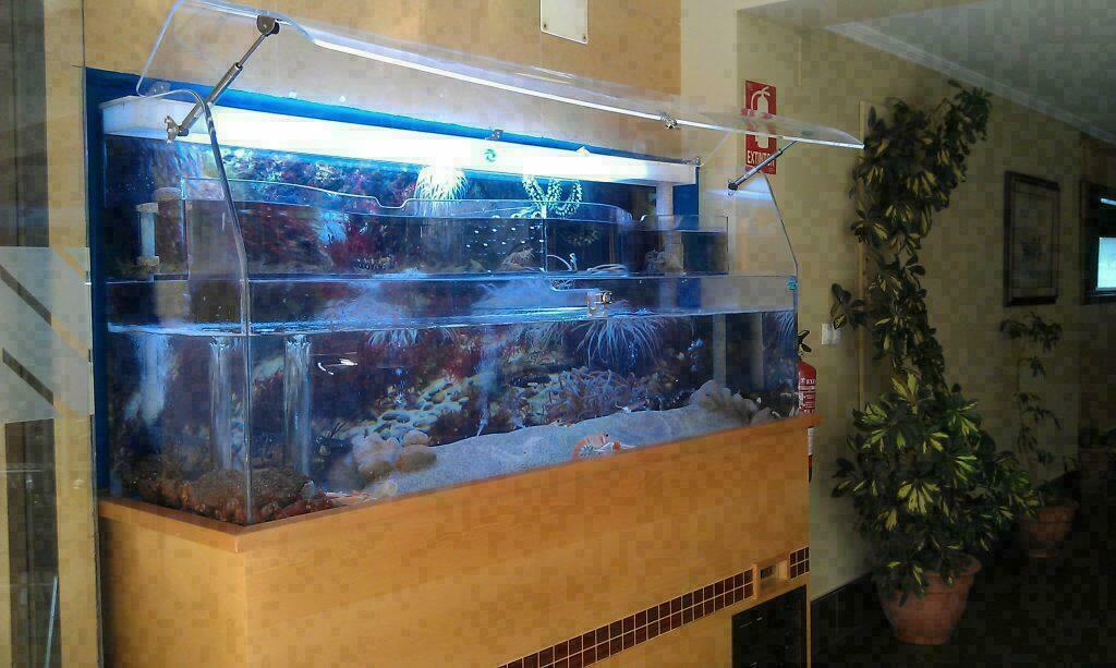 Aquariums 5